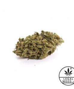 cannabis light polinesian legal weed