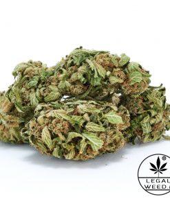 Cannabis Light - CBD Certificato - Legal Weed - Inflorescenze