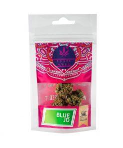 Cannabis Light - Inflorescenze - CBD Certificato - Legal Weed - Blue Jo